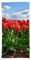 Long Red Tulips Beach Towel by Mihaela Pater