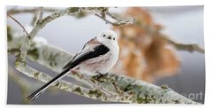 Beach Towel featuring the photograph Long-tailed Tit by Torbjorn Swenelius