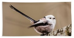 Beach Towel featuring the photograph Long-tailed Tit Wag The Tail by Torbjorn Swenelius