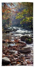 Beach Towel featuring the photograph Longing For Home by Karen Wiles