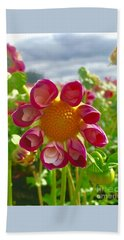 Look At Me Dahlia Beach Towel by Susan Garren