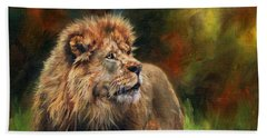 Look Of The Lion Beach Towel by David Stribbling