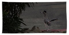 Look Out Wile E Coyote Beach Towel by Anne Rodkin
