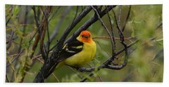 Looking At You - Western Tanager Beach Towel