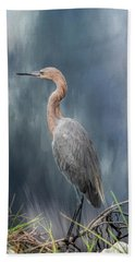 Beach Towel featuring the photograph Looking For Food by Kim Hojnacki