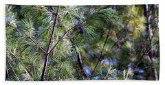Looking Through The Pine Needles Beach Sheet