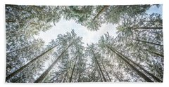 Looking Up In The Forest Beach Towel by Hannes Cmarits