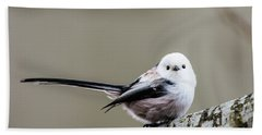Beach Towel featuring the photograph Loong Tailed by Torbjorn Swenelius
