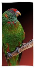 Lorikeet Portrait Beach Towel