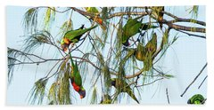 Lorikeets Swarming From Tree To Tree Beach Towel