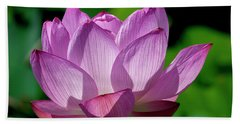 Beach Towel featuring the photograph Lotus Beauty--buxom Beauty II Dl0090 by Gerry Gantt