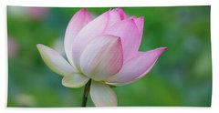 Lotus Bloom Beach Towel