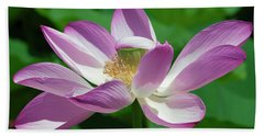 Lotus--center Of Being--protective Covering I Dl0087 Beach Towel