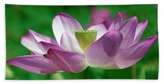 Beach Towel featuring the photograph Lotus--center Of Being Vi Dl0086 by Gerry Gantt