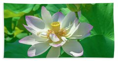 Beach Towel featuring the photograph Lotus--fading I Dl0079 by Gerry Gantt