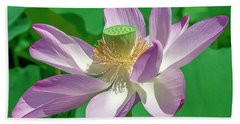Beach Towel featuring the photograph Lotus--fading II Dl0080 by Gerry Gantt