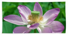 Beach Towel featuring the photograph Lotus--fading IIi Dl0081 by Gerry Gantt