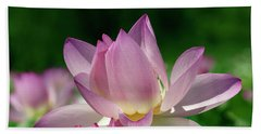 Beach Towel featuring the photograph Lotus--sisters I Dl0082 by Gerry Gantt