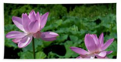 Beach Towel featuring the photograph Lotus--sisters II Dl0083 by Gerry Gantt