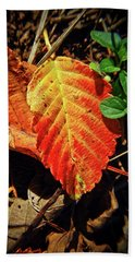 Beach Towel featuring the photograph Loud Leaf by Adria Trail