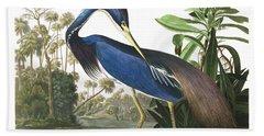Louisiana Blue Heron Beach Towel