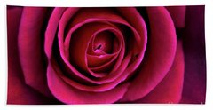 Beach Towel featuring the photograph Love Is A Rose by Linda Lees