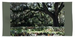 Beach Towel featuring the photograph Low Country Series I by Suzanne Gaff