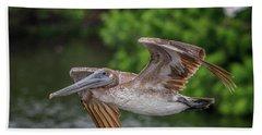 Low Pass Pelican #1 Beach Sheet