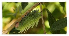Luna Moth Caterpillar Upside Down  Beach Towel