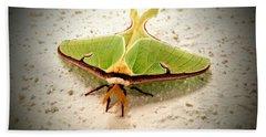Luna Moth Beach Sheet