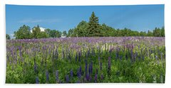 Lupine Field Beach Towel