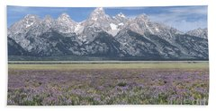 Lupine And Grand Tetons Beach Sheet by Sandra Bronstein