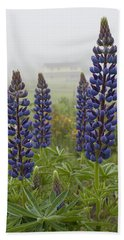 Lupine In The Fog Beach Towel