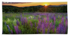 Beach Towel featuring the photograph Lupine Lumination by Bill Wakeley