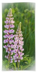 Beach Towel featuring the photograph Lupine Pair by Paul Miller