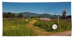 Beach Towel featuring the photograph Lupine Path To The Notch by Brenda Jacobs