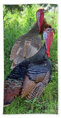 Lurking Turkeys Beach Sheet by Joe Jake Pratt