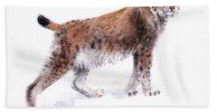 Lynx Beach Sheet