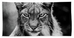 Lynx Portet Beach Sheet