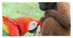 Macaw And Monkey Beach Towel