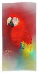 Macaw Beach Sheet