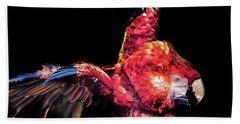 Macaw Parrot Beach Towel