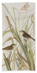 Macgillivray's Finch  Beach Towel by John James Audubon