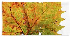 Macro Autum Beach Towel