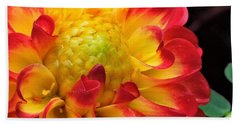 Macro Dahlia Beach Towel
