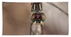 Macro Dragonfly Beach Towel