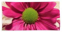 Magenta Chrysanthemum Beach Sheet