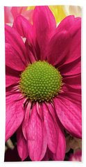 Magenta Chrysanthemum Beach Towel