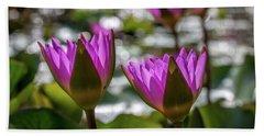 Magenta Water Lilies Beach Sheet