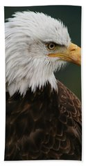 Beach Towel featuring the photograph Magestic Eagle by Jacqui Boonstra